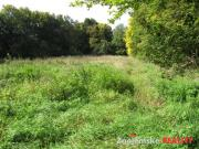 Prodej pozemku Lančov